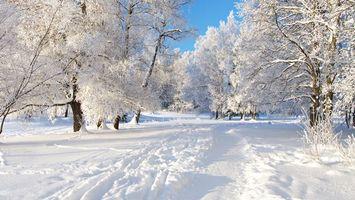 Фото бесплатно сугробы, мороз, деревья