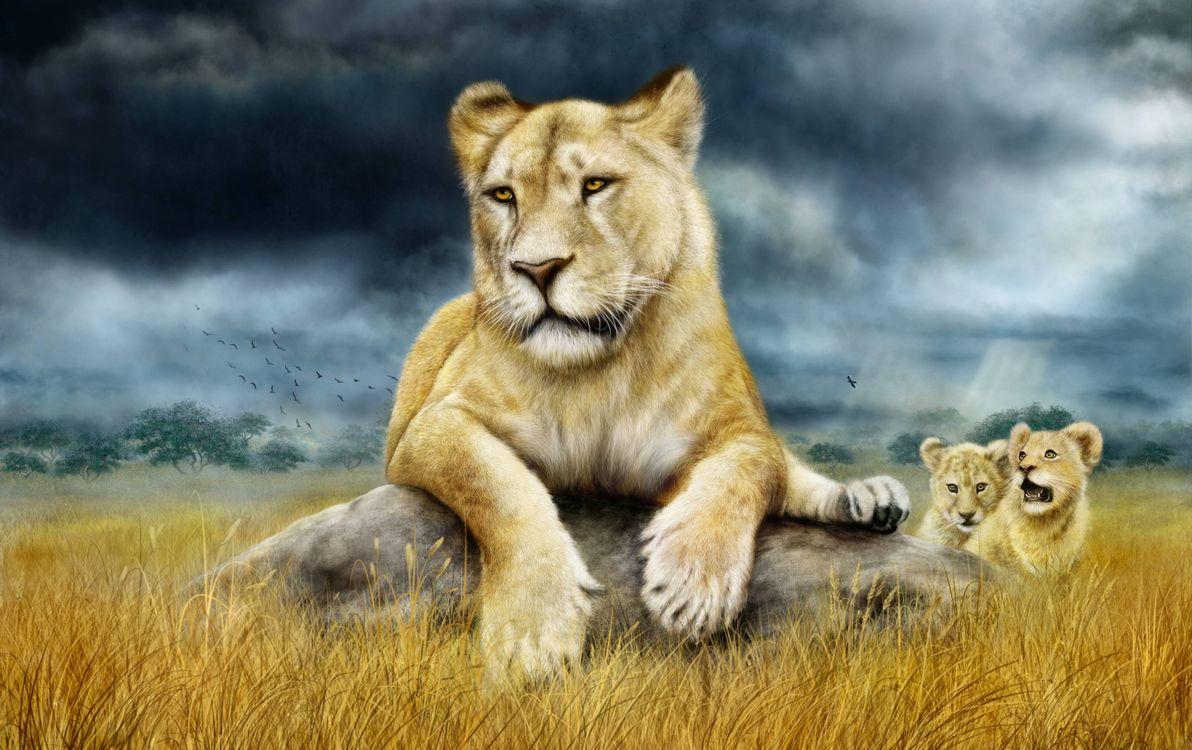 Фото бесплатно львица, львята, art, рендеринг