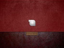 Фото бесплатно linux mint, кожа, прямая