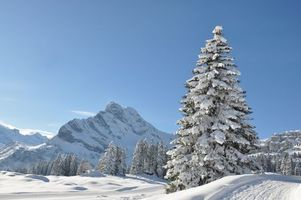 Заставки зима, горы, снег, деревья, пейзаж