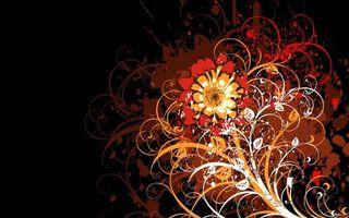 Бесплатные фото фон,заставка,орнамент,узор,цветок,листья,рисунок