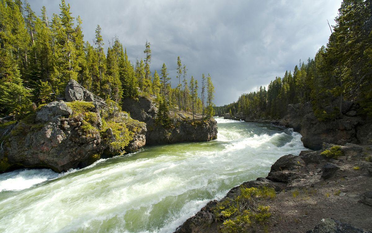 Фото бесплатно лес, деревья, тучи, небо, река, горная, вода, волны, камни, берег, природа, природа