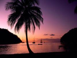 Бесплатные фото пальмы,небо,море,песок,корабли,холмы,природа