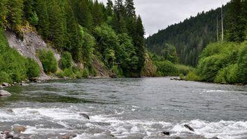 Бесплатные фото река,вода,пена,лес,деревья,горы,небо
