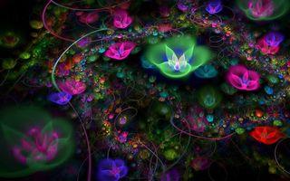 Фото бесплатно листья, узоры, цветы