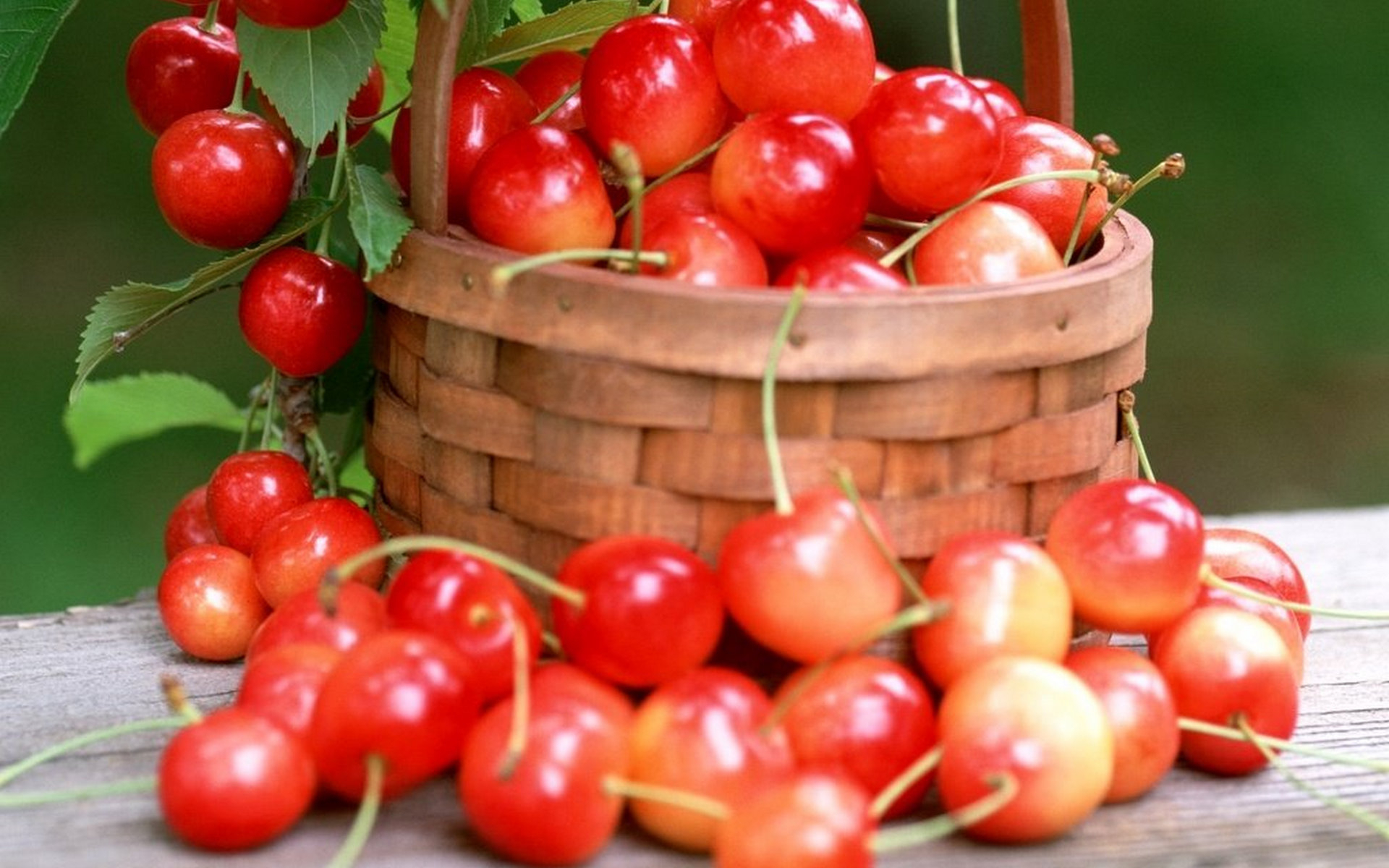 вишни, корзинка, красные