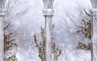 Бесплатные фото колонны,зима,снег,ветви,рендеринг
