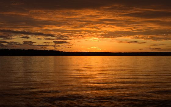 Бесплатные фото закат,море,берег,макушки деревьев,оранжевое,пейзажи