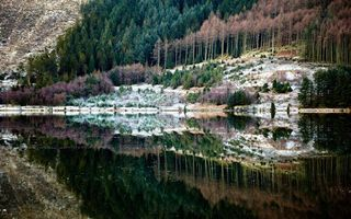 Photo free mountains, water, forest