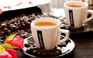 Бесплатные фото кофе,зерна,чашка,кружа,тарелка,блюдце,пенка