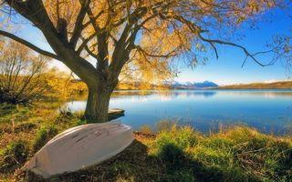 Бесплатные фото озеро,дерево,лодка,пейзажи