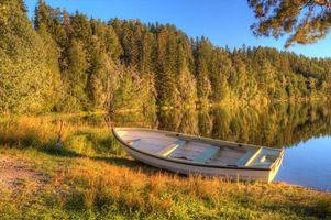 Бесплатные фото озеро,утро,лес,ранняя,осень,лодка,природа