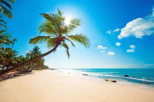 Бесплатные фото тропики,море,пляж,карибы,пейзажи
