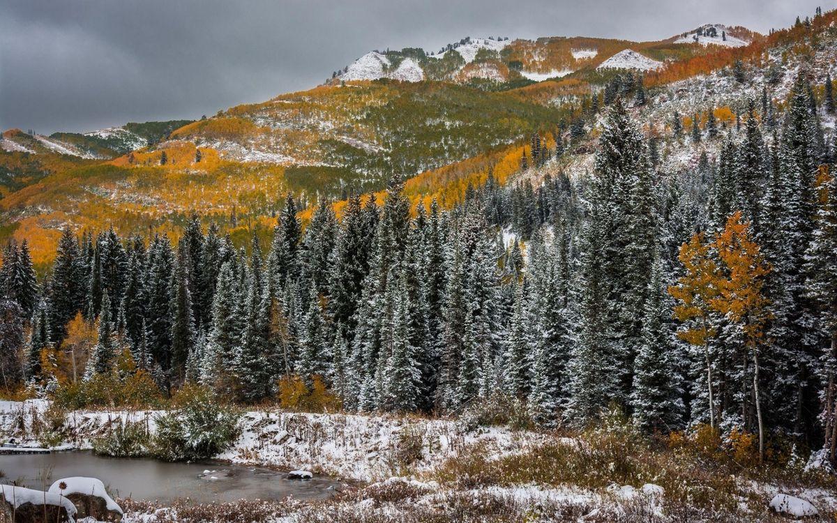 Фото бесплатно горы, деревья, трава, первый, снег, река, природа, природа