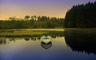 Бесплатные фото лодочка,белая,река,заводь,тростник,деревья,лес