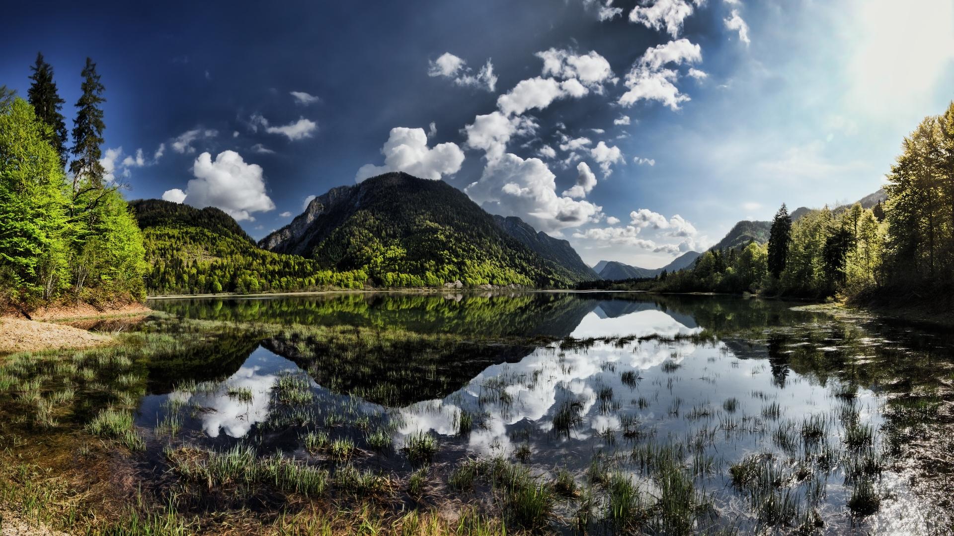 озеро, трава, отражение