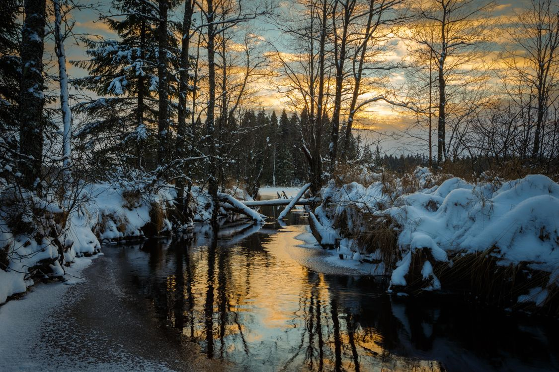 Фото бесплатно Швеция, закат, зима, река, лес, деревья, пейзаж, пейзажи