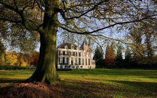 Фото бесплатно трава, газон, дерево, дом, особняк, листья, осень, пейзажи