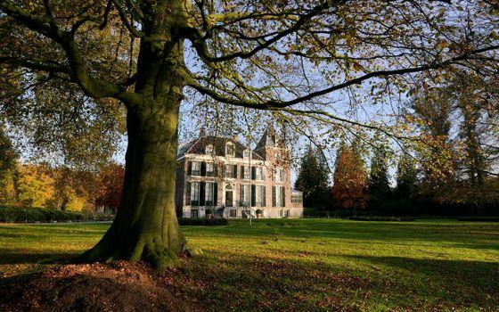 Заставки трава, газон, дерево, дом, особняк, листья, осень, пейзажи