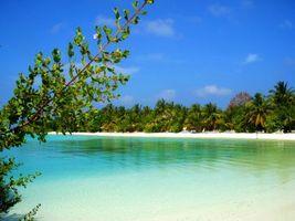 Фото бесплатно остров, природа, море