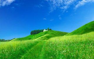 Обои яркое, холмистое, поле, трава, зелень, церковь