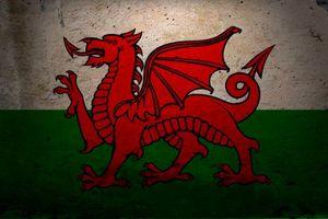 Обои дракон, стена, красный, нарисованный, разное