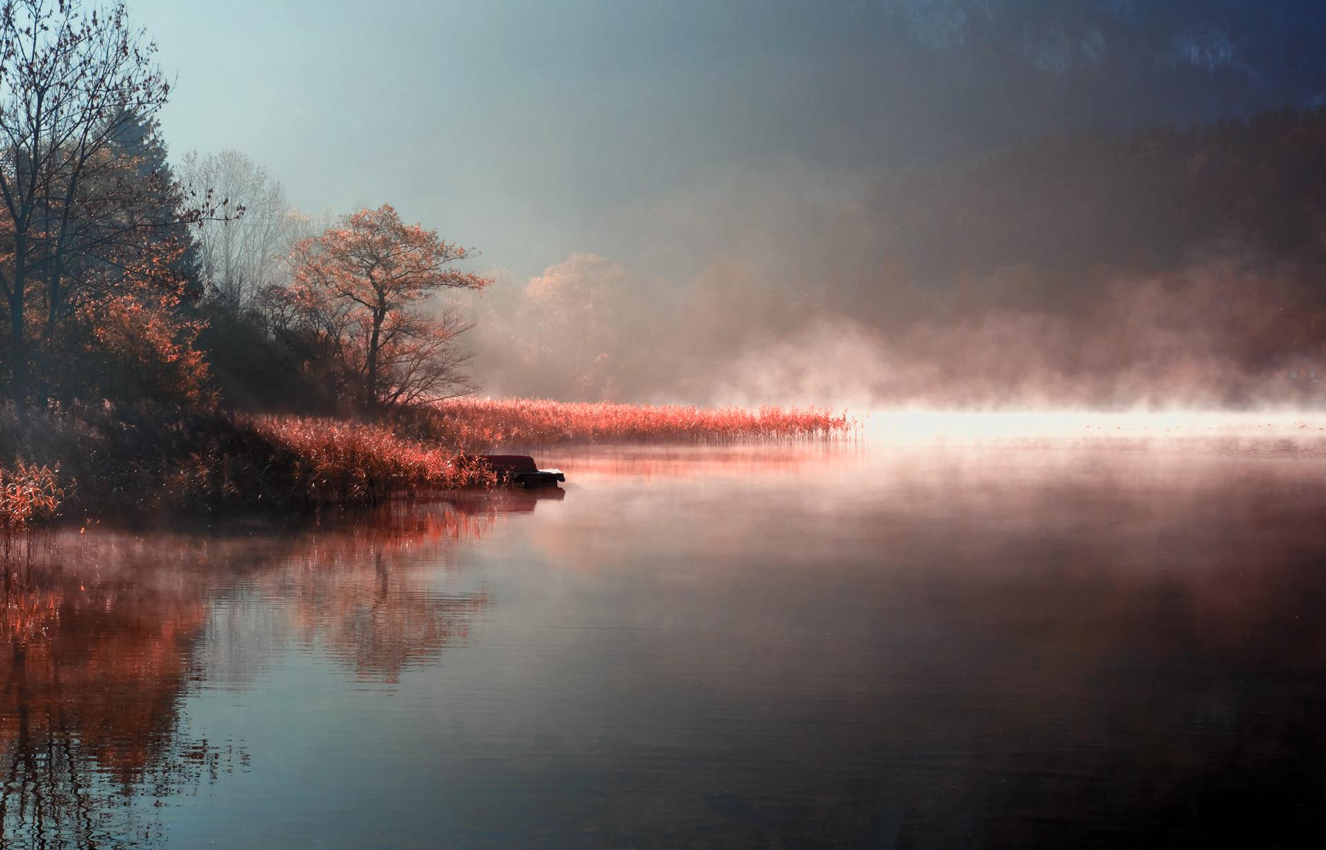 Туман над лесной речкой  № 636665 загрузить