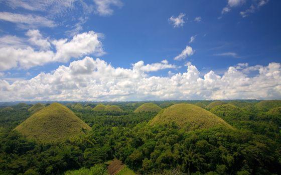 Фото бесплатно долина, простор, холмы, деревья, небо, облака, пейзажи