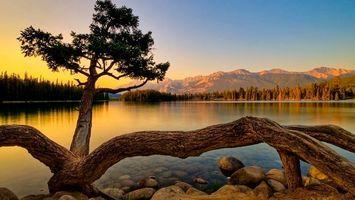 Бесплатные фото озеро,вечер,горы,деревья,берег,небо,закат