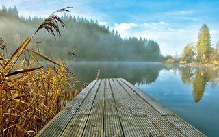Бесплатные фото озеро,отражение,мостик,туман,деревья,небо,пейзажи