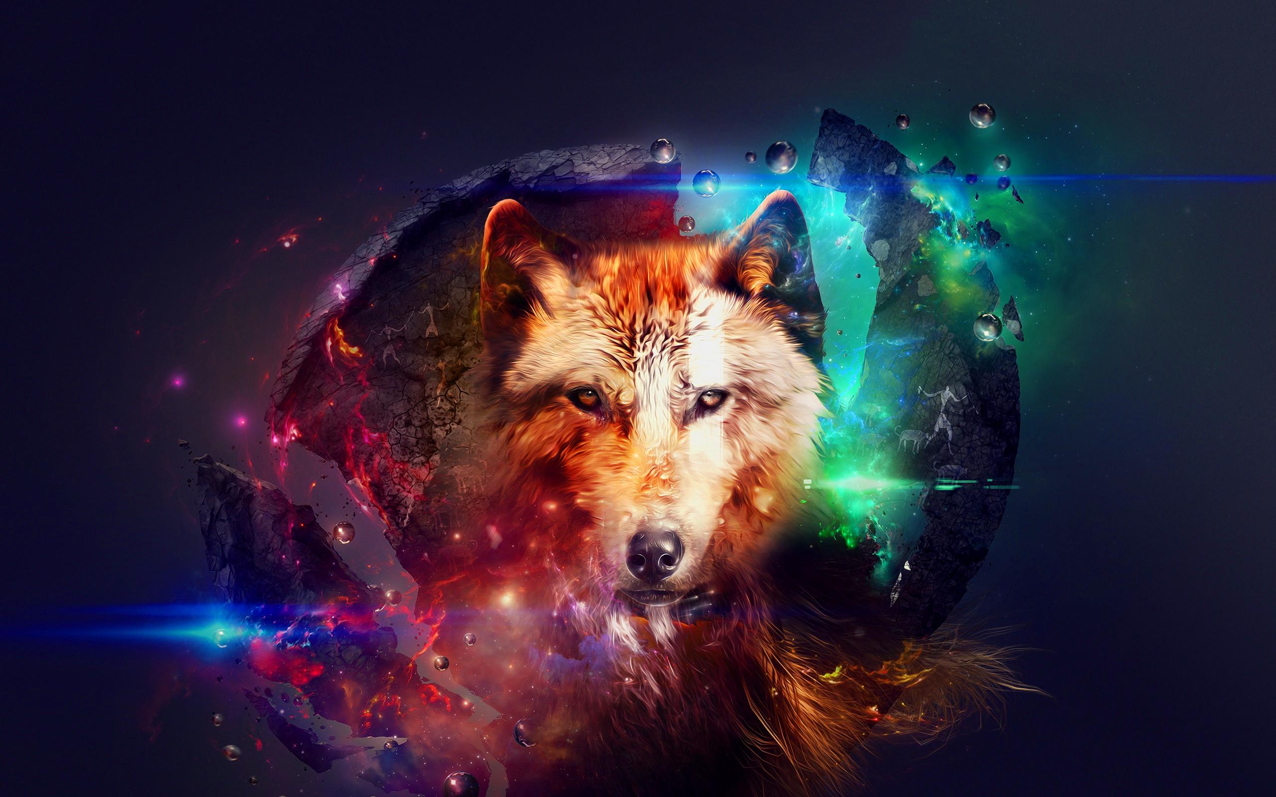 волк, шерсть, взгляд