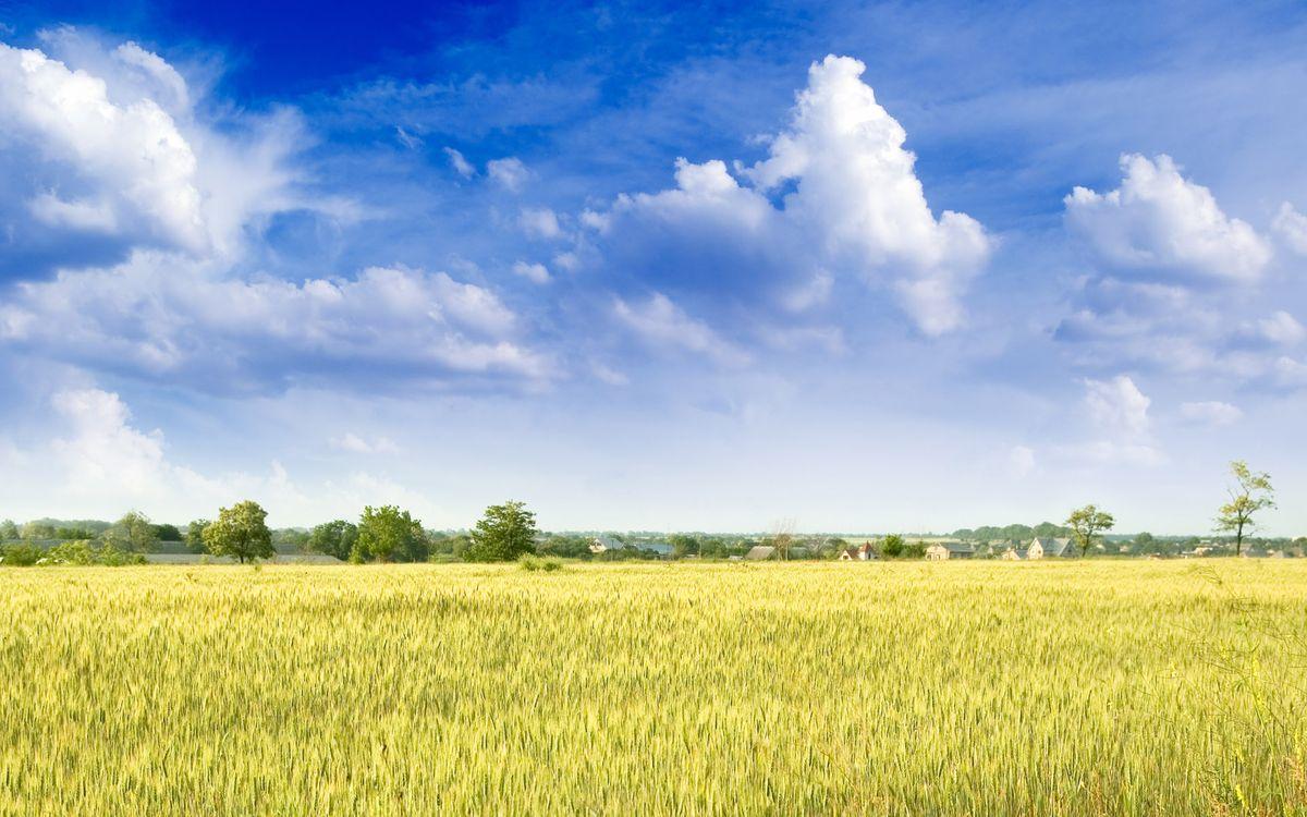 Фото бесплатно поле, простор, пейзажи, пейзажи - скачать на рабочий стол