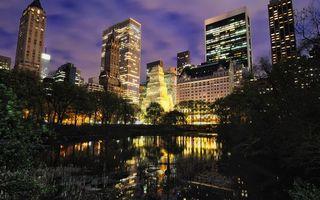 Бесплатные фото здания,высотки,дома,подсветка,освещение,деревья,листья