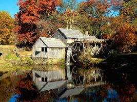 Бесплатные фото дома,сарай,вода,лес,деревья,трава,город