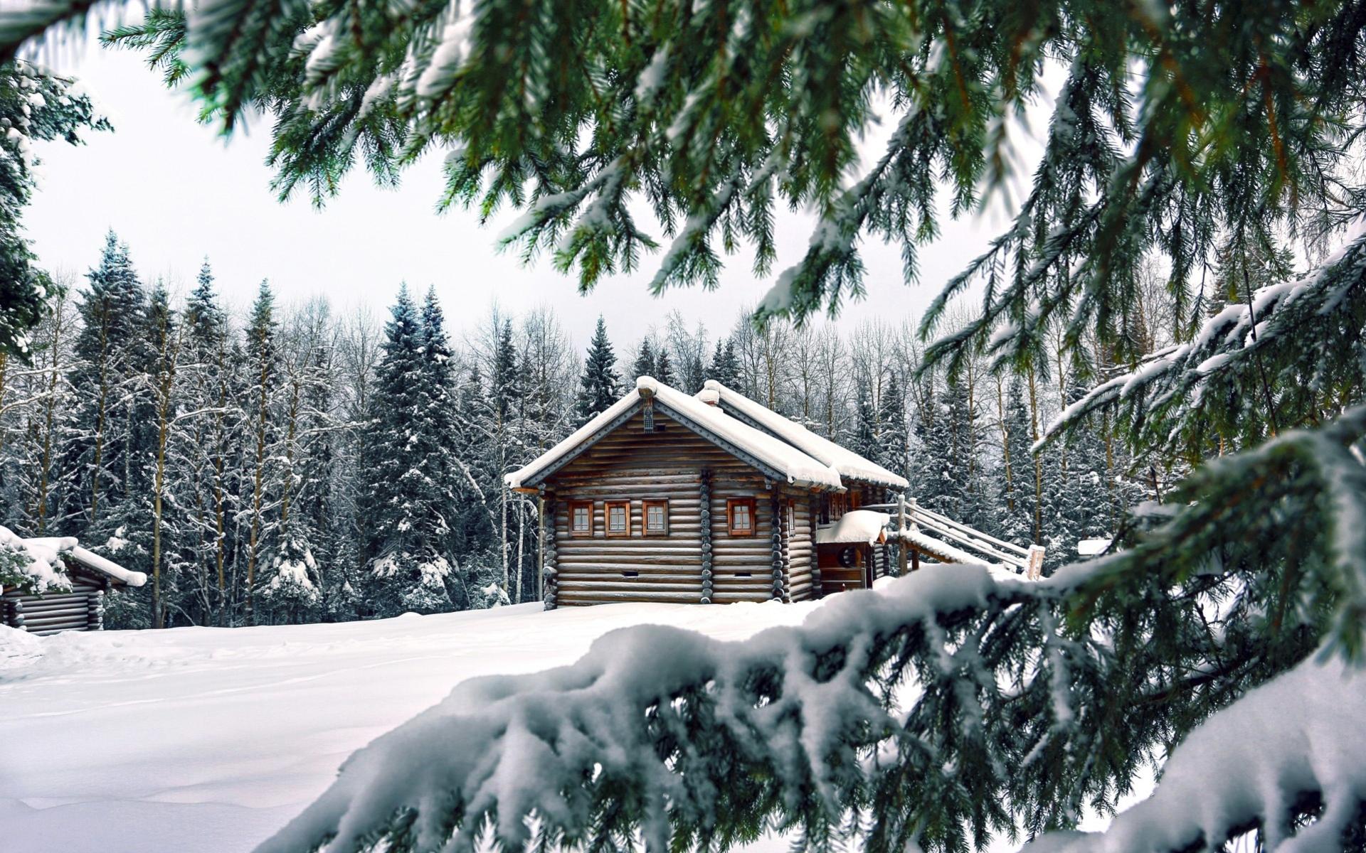 фотообои домик в лесу зимой легенда гласит