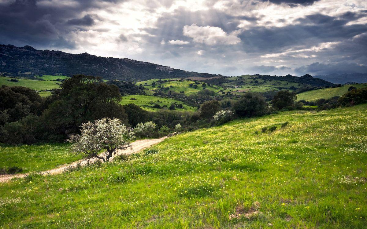 Фото бесплатно дорога, трава, деревья, горы, небо, солнце, лучи - на рабочий стол