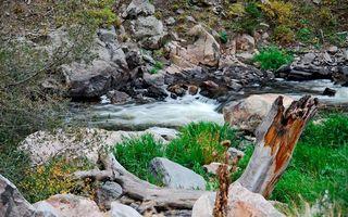 Фото бесплатно камни, холим, река