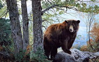 Фото бесплатно медведь, картина, деревья