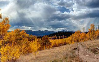 Фото бесплатно осень, деревья, горы