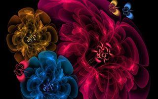Обои цветки, бабочки, линии, графика, фон, черный, рисунок, бутоны, разное, цветы