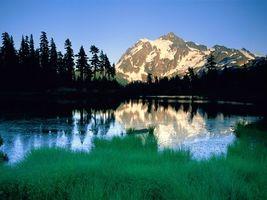 Фото бесплатно вода, лес, деревья, горы, трава, зеленая, природа