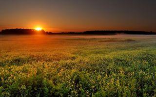 Бесплатные фото закат,солнце,красное,небо,поле,лес,холмы