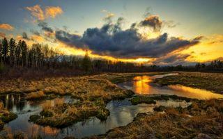 Бесплатные фото закат,солнце,река,трава,лес,облака,пейзажи