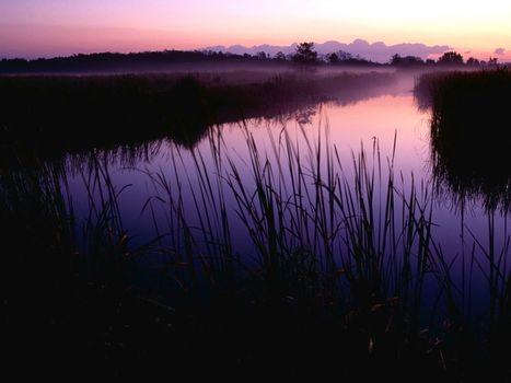 Фото бесплатно заводь, вечер, закат