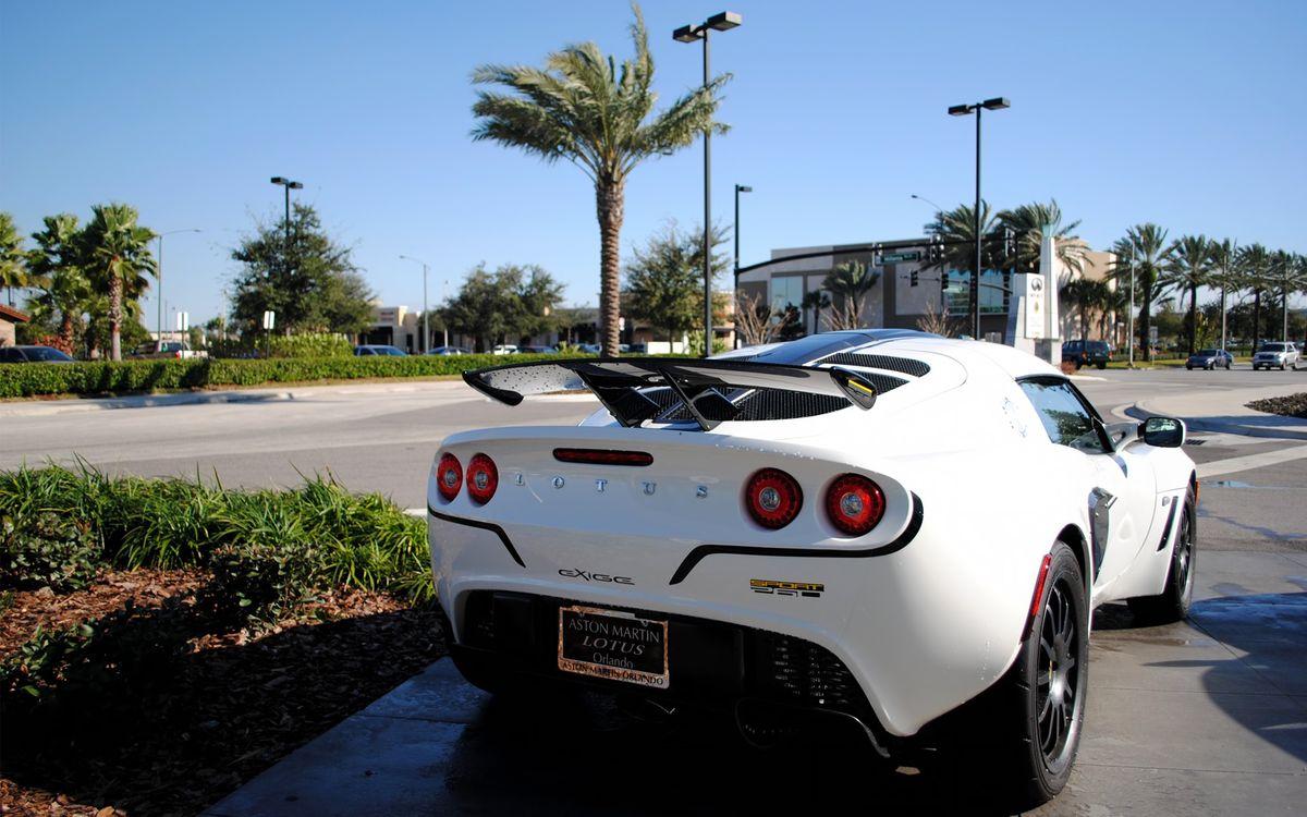 Фото бесплатно автомобиль, колеса, диски, шины, фары, багажник, значок, надписи, цвет, белый, пальмы, дома, асфальт, машины, машины