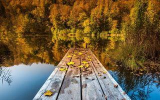 Фото бесплатно осень, озеро, мостик