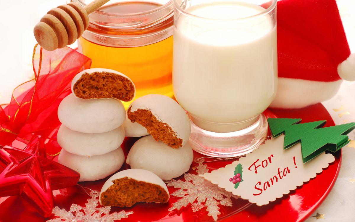 Картинка еда, пряники, молоко, на рождество, санта клаусу, for santa, елочка, 2012, праздники на рабочий стол. Скачать фото обои праздники