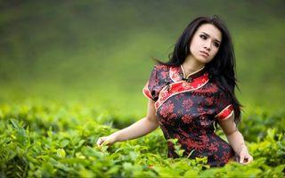 Бесплатные фото девушка, волосы, прическа, брюнетка, трава, поле, платье