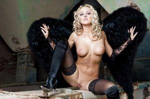 Бесплатные фото gifsjpgs,tumblr,блондинка,киска,heels,lingerie,wings