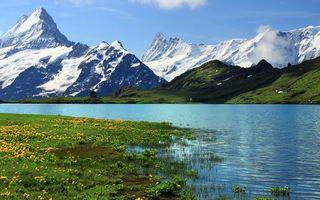 Бесплатные фото горы,скалы,трава,поле,цветки,озеро,вода